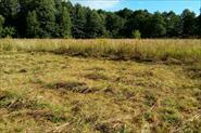 Покос участка в поле