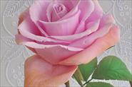 Цветы и аксессуары из фоамирана в наличии